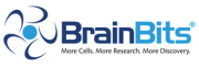 BrainBits LLC